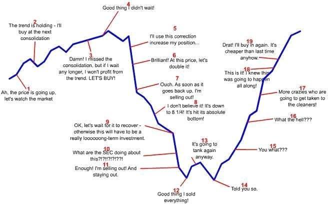 emocie investorov
